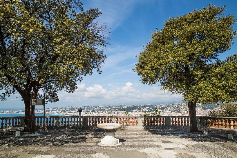 NICE View from Castle Hill van Melanie Viola
