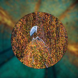 Reiger in boom van Carla van Zomeren