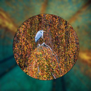 Reiher im Baum von Carla van Zomeren