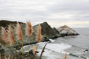 Les plumes se balancent dans le vent. Vue sur la côte à Big Sur sur Marit Lindberg
