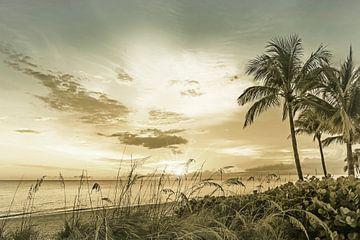 BONITA BEACH Sonnenuntergang | Vintage von Melanie Viola