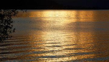 Abendlicher Bodensee von Thomas Jäger