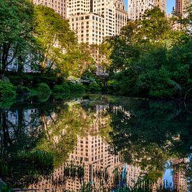 Central Park New York City von Eddy Westdijk