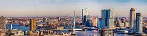 Panorama Rotterdam mit den beiden Brücken
