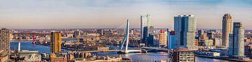 Panorama Rotterdam met de twee bruggen van Fred Leeflang