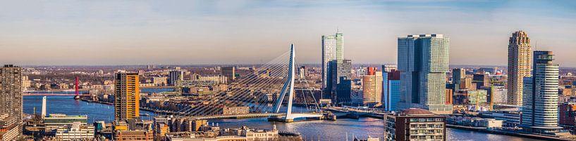 Panorama Rotterdam mit den beiden Brücken von Fred Leeflang