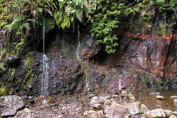 waterval de 25 fontes op madeira van Compuinfoto .
