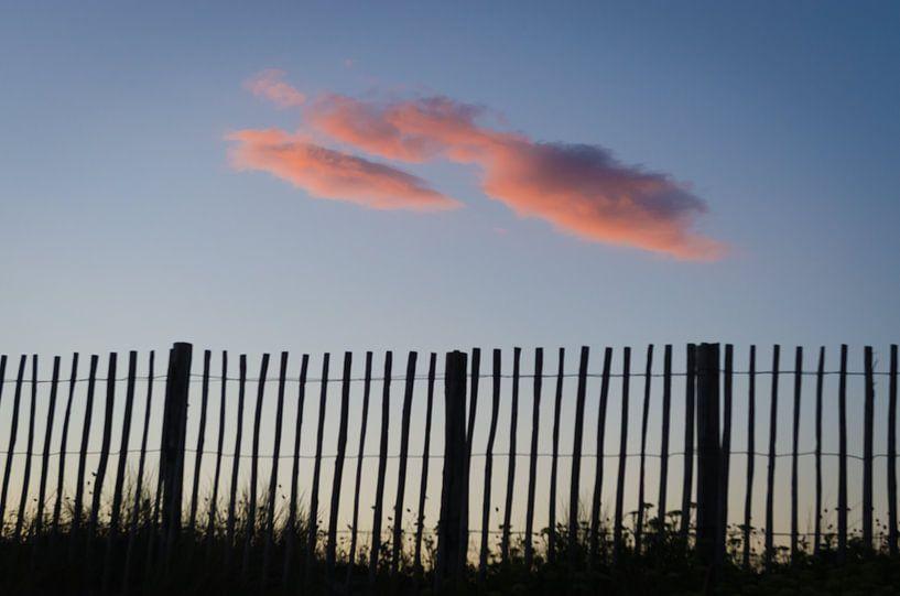 Roze wolk achter het hek van Mark Bolijn