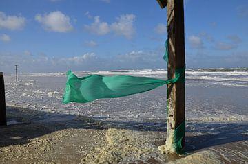 Wind von Corinna Vollertsen