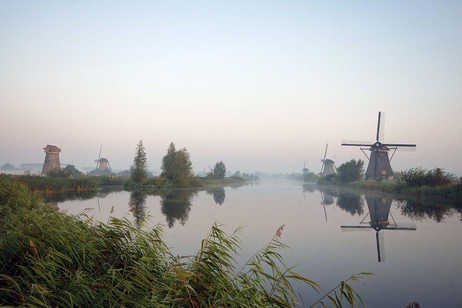hollands landschap met molens