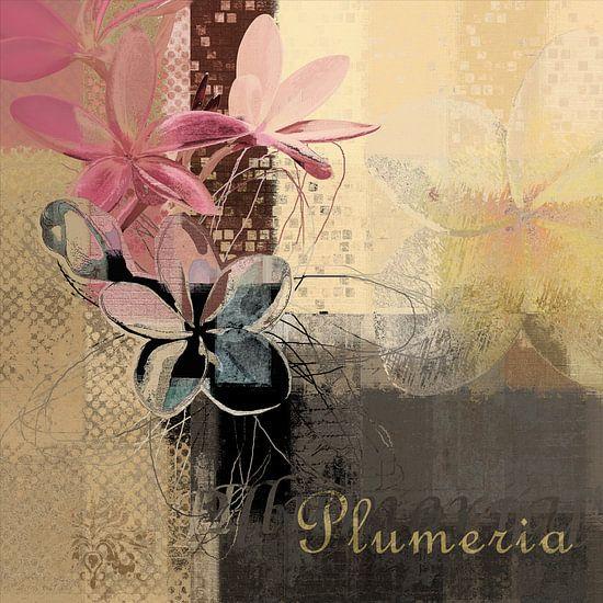 Plumeria - 167m4t3a van Aimelle ML