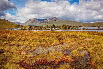 Schotland van Rob Boon