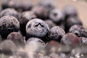 gefrorene Heidelbeeren von Tania Perneel