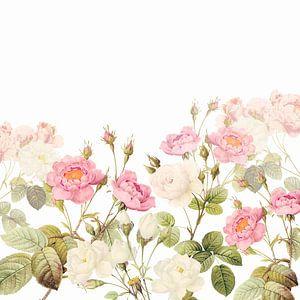 Vintage- Old Pink English Roses Meadow van Uta Naumann