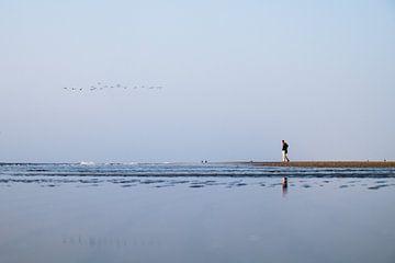Strand van Michiel Wijnbergh