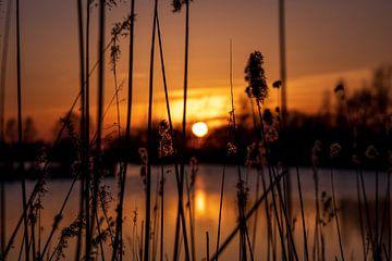 Roter Sonnenuntergang an einem Bach von StephanvdLinde