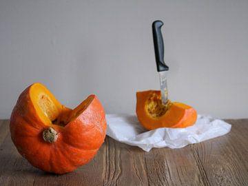 Pompoen stilleven,Pumpkin still life,Kürbisstillleben,Citrouille encore vie van