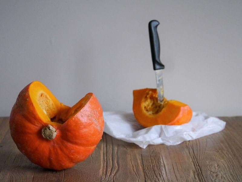 Pompoen stilleven,Pumpkin still life,Kürbisstillleben,Citrouille encore vie van Evelien Brouwer