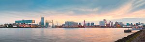 Skyline Rotterdam met de 3 bruggen Panorama van Ronald Tilleman