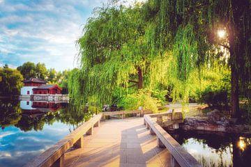Tuinen van de wereld - China van Skyze Photography by André Stein