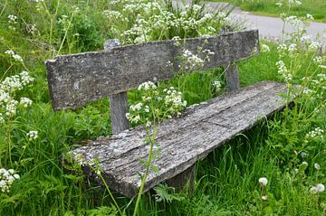 Holzbank am Wegesrand von Susanne Seidel