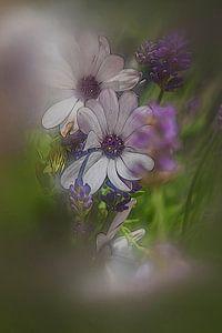Gestileerde bloemen