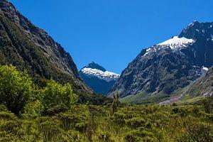 Vallei in Fiordland NP, Nieuw Zeeland