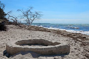 Oostzee: Darß - Weststrand van t.ART