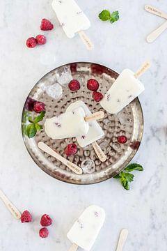 Yoghurt-framboosijsjes van Nina van der Kleij
