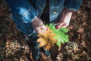 Herfstblad met Nagellak