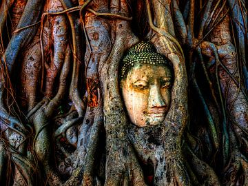 Hoofd van een Boeddhabeeld van Jürgen Wiesler