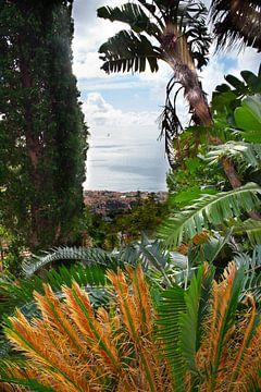 Funchal, von oben gesehen von jonathan Le Blanc