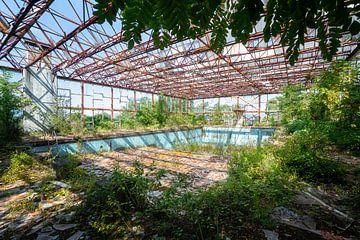 Verlaten Zwembad met Planten. van Roman Robroek