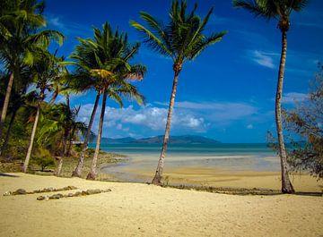 Verlaten strand op Long island, Queensland, Australie van