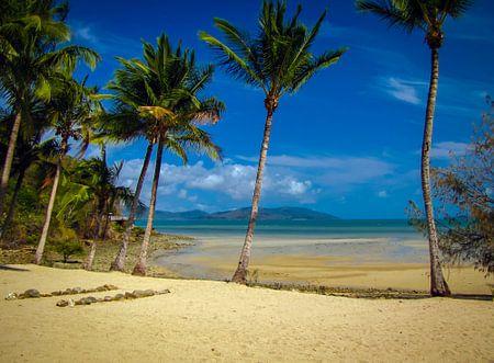 Verlaten strand op Long island, Queensland, Australie