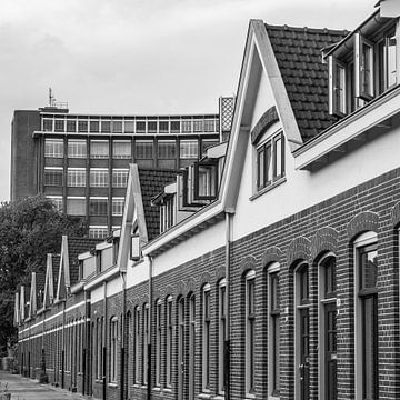 Philips Häuser sur Jasper Scheffers