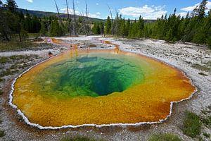 Morning Glory Pool in Yellowstone