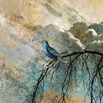 HEAVENLY BIRD IIc-Q von Pia Schneider