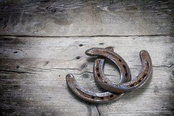 gelukschoenen met roest verstrengeld op grijze rustieke houten planken, symbool voor geluk, achtergr van Maren Winter