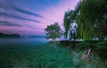 Wunderschöner Morgen von Wim van D