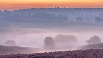 De laagjes van de Posbank in de mist van Sander Grefte
