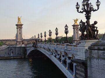 Pont-Alexandre-||| Parijs van Nicole  Brouwer