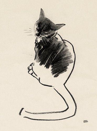 Noesje,tekening van een kat met houtskool van