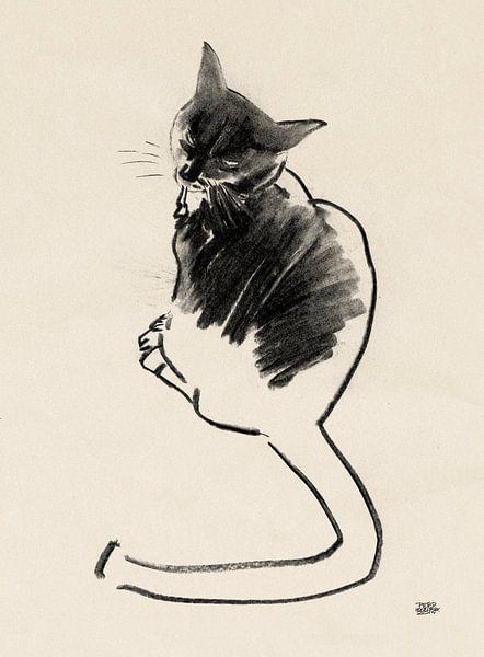 Noesje,tekening van een kat met houtskool van Pieter Hogenbirk