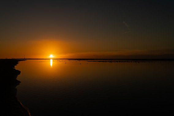 Zonsondergang met water en vogels van Bart van Dam