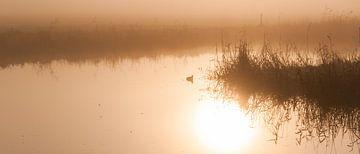 Sunrise Refelction van aschwinn Smith