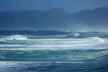 Zuid-Afrika, de wilde kust het hoge golven rond Kaapstad van Discover Dutch Nature