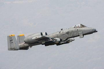A10 Thunderbolt tijdens take off von Nico van Remmerden