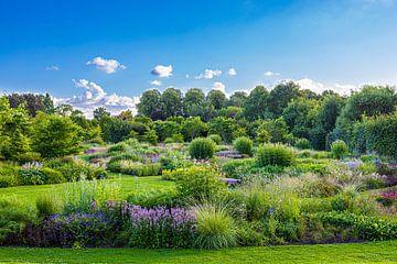 Schmetterlingsgarten von Stefan Wapstra