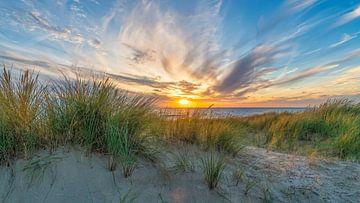Noordzee met de duinen van eric van der eijk